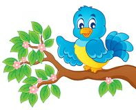 Bird theme image  Stock Images
