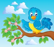 Bird theme image Stock Photo