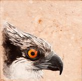 Bird tile. royalty free stock image