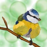 Bird titmouse. Hand-drawn illustration bird titmouse Royalty Free Stock Image