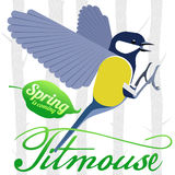 Bird titmouse  logo Stock Photos