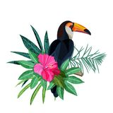 Bird toucan on branch. Green tropical palm leaves and hibiscus flower. Vector illustration isolated on white background. Bird toucan on branch with green Stock Photo