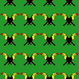 Bird Toucan seamless pattern Stock Image
