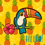Bird Toucan, tropical hibiscus flower in cartoon style. The phrase Hello Royalty Free Stock Image