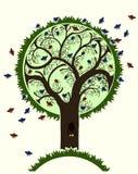 Bird tree Stock Images