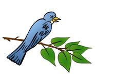 Bird in tree Stock Photo