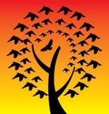 Bird tree royalty free illustration