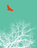 Bird and tree. Illustration of a red bird flying high over a barren tree Stock Photos