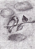 Bird on a tree branch. Bird sitting on a tree branch - handmade pencil drawing Stock Images