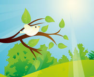 Bird On A Tree Branch And A Sunny Day. Vector illustration of a white bird on a tree branch and it is a sunny day with a blue sky and green meadow with green Stock Photography