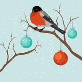 Bird on tree in Christmas. A vector illustration Stock Image