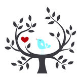 Bird in a tree with love Stock Photos