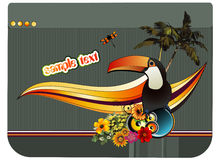 Bird tropical vector Stock Photography