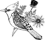 Bird with a tuft and plants on a background. Graphic illustration. Fractal plant Royalty Free Stock Photos