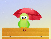 Bird with umbrella Royalty Free Stock Photography