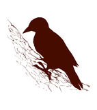 Bird. Vector drawing Stock Images