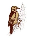 Bird. Vector drawing Royalty Free Stock Photo