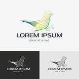 Bird vector logo template Stock Image