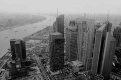 Bird view of Shanghai Royalty Free Stock Image