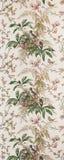 Bird wallpaper Royalty Free Stock Images