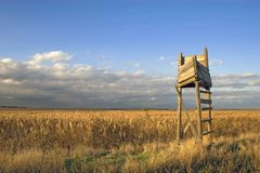 Bird watch tower. Wooden bird watch tower in sunset light royalty free stock photo