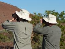 Bird watchers. A pair of bird watchers of an African vacation royalty free stock photos