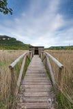 Bird watchers hide near lake Stock Images