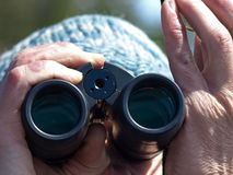 Bird Watching Binoculars. A male with cold hands looking through his binoculars searching for birds Royalty Free Stock Photography