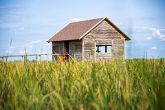 Bird watching hut Royalty Free Stock Photography