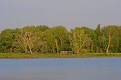 Bird watching hut hidden between trees next to a lake stock photos