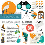 Bird watching infographic template Royalty Free Stock Photos