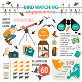 Bird watching infographic template Royalty Free Stock Images