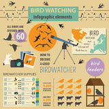 Bird watching infographic template Stock Images
