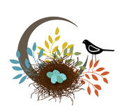 Bird  watching over  nest Royalty Free Stock Images