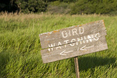 Bird Watching Sign Stock Photography