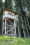 Bird watching tower in the forest Royalty Free Stock Photo