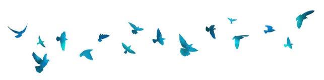 Free Bird Watercolor. A Flock Of Blue Birds. Mixed Media. Vector Illustration Royalty Free Stock Photos - 217692668