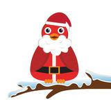 Bird wearing Santa costume Stock Photos