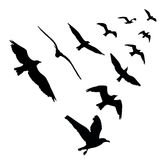 Bird wedge silhouettes on white background. Vector illustration Royalty Free Stock Images