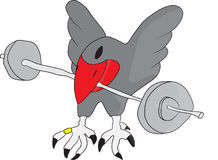 Bird with weights Royalty Free Stock Image