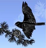 Bird. Wild nature bird in winter forest Stock Photos