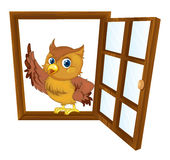 Bird in a window Royalty Free Stock Photography