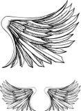 Bird Wing Stock Photography