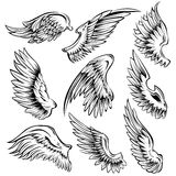 Bird Wings Black White Set Stock Image