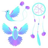 Bird wings decorative elements Stock Photos