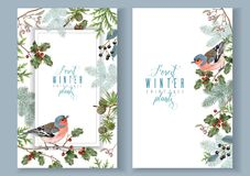 Bird winter banners. Vector vintage banners with winter forest branches and birds. Highly detailed winter design for Christmas greeting card, party invitation royalty free illustration