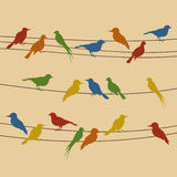 Bird on a wire. Birds sit on wires. A vector illustration Royalty Free Stock Photos