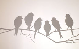 Bird on a wire. Half a dozen birds sit on a branch and discuss the day's happenings Stock Image
