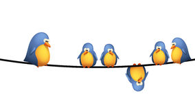 Bird wire. Illustration of group of birds sitting on wires on white background Stock Images