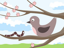 Bird with a worm. Meeting birds and a caterpillar on a tree. Spring landscape complements the picture. Vector  illustration Stock Images